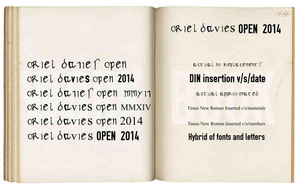 Oriel Davies Open 2014 lr