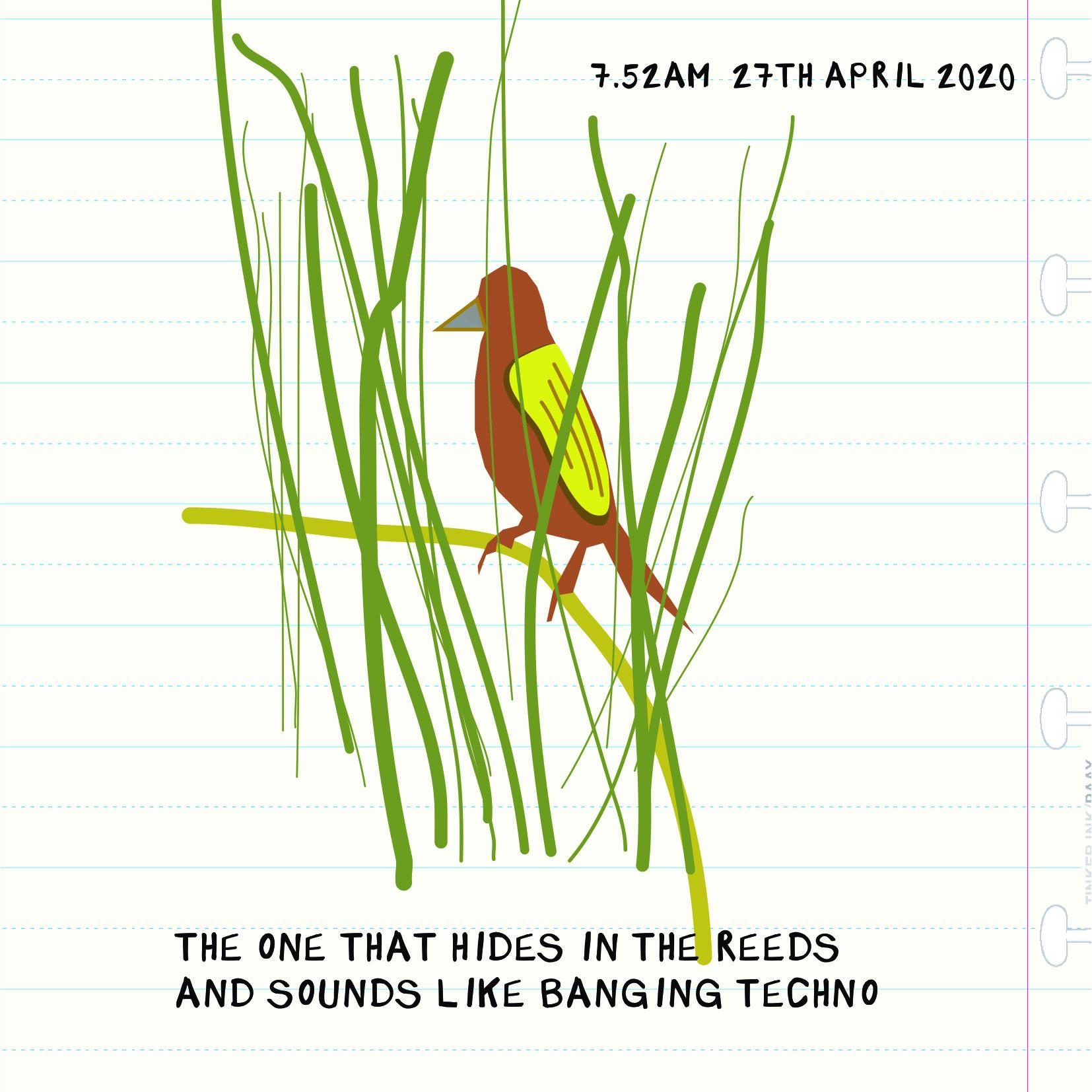 2704 bird