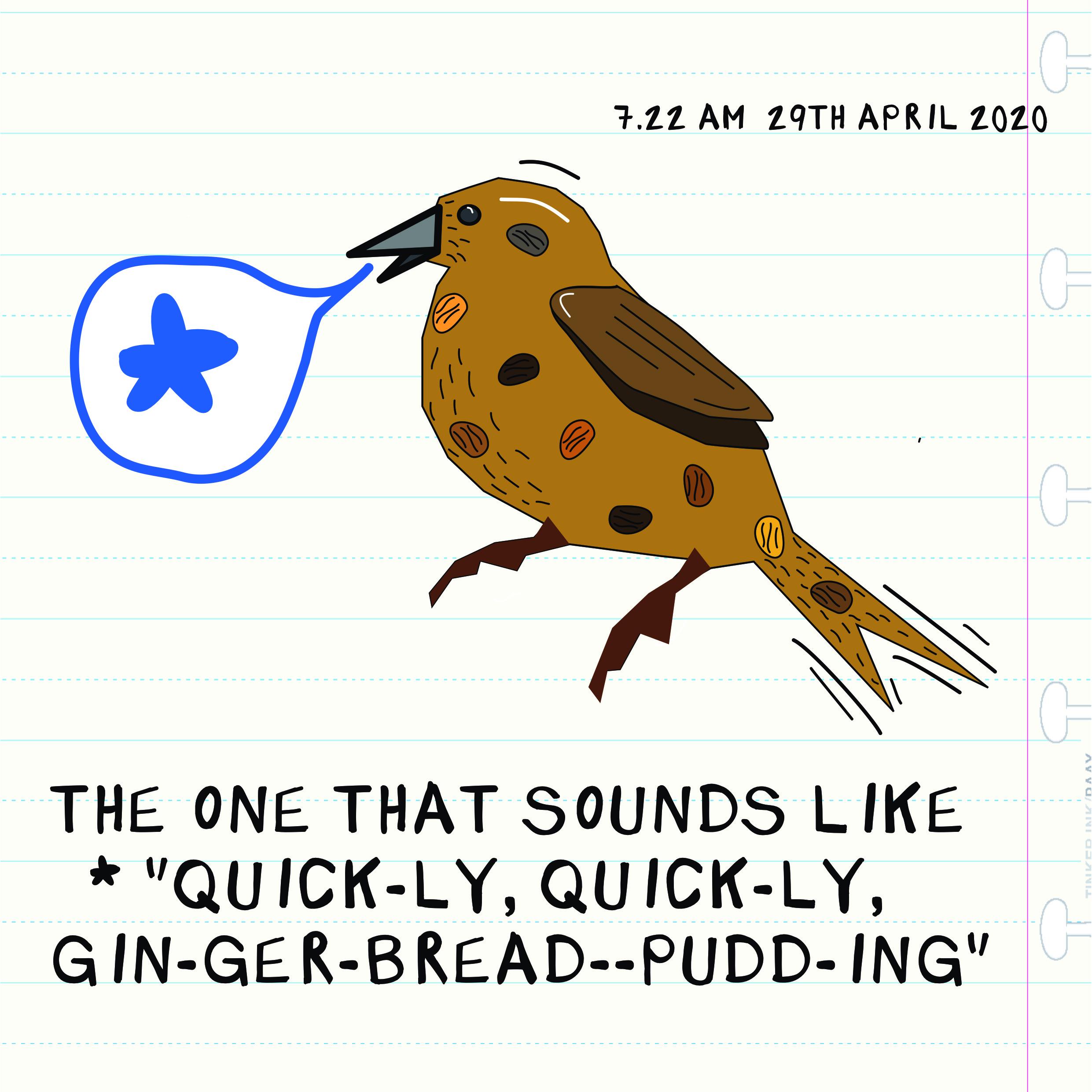 2904 bird