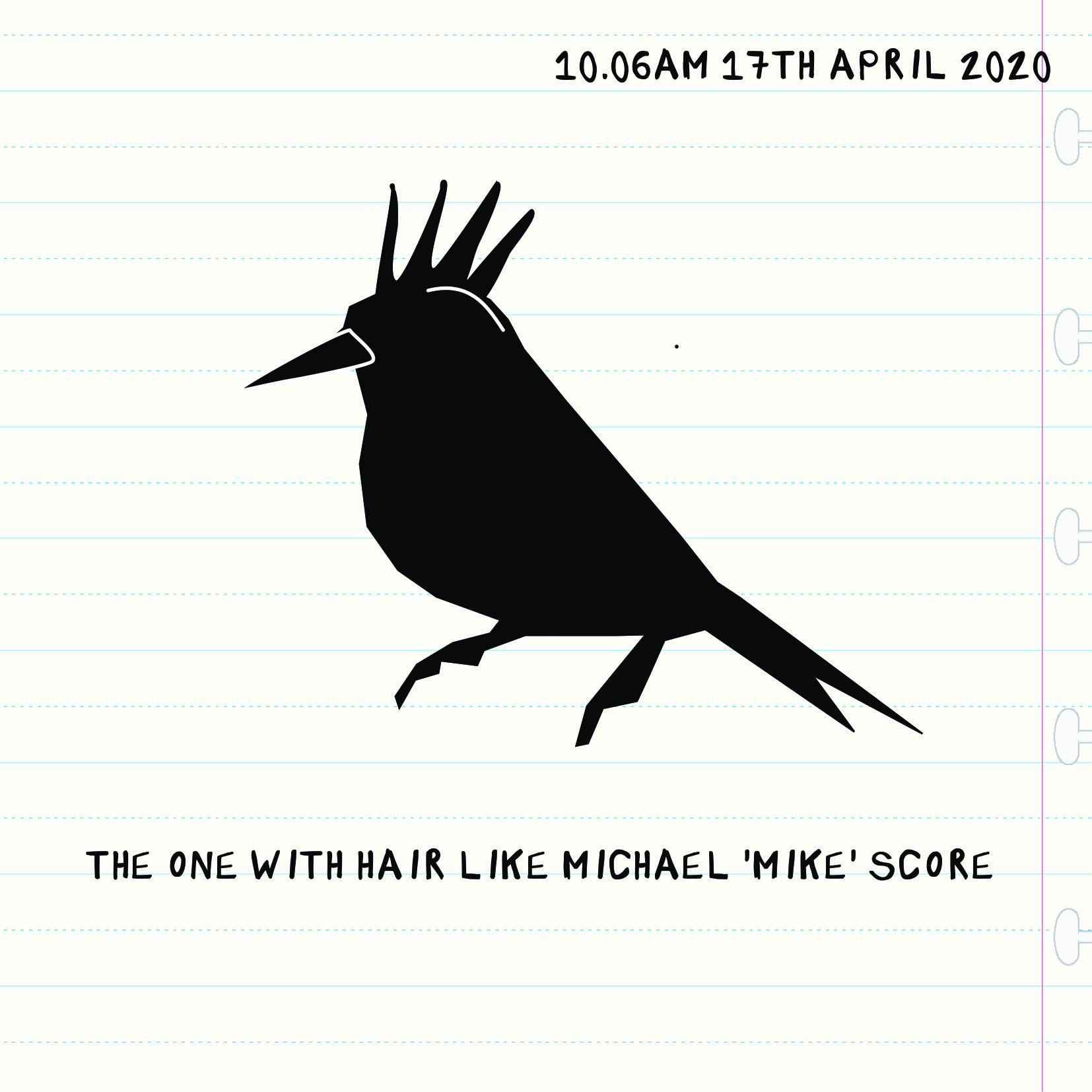 Bird 1704