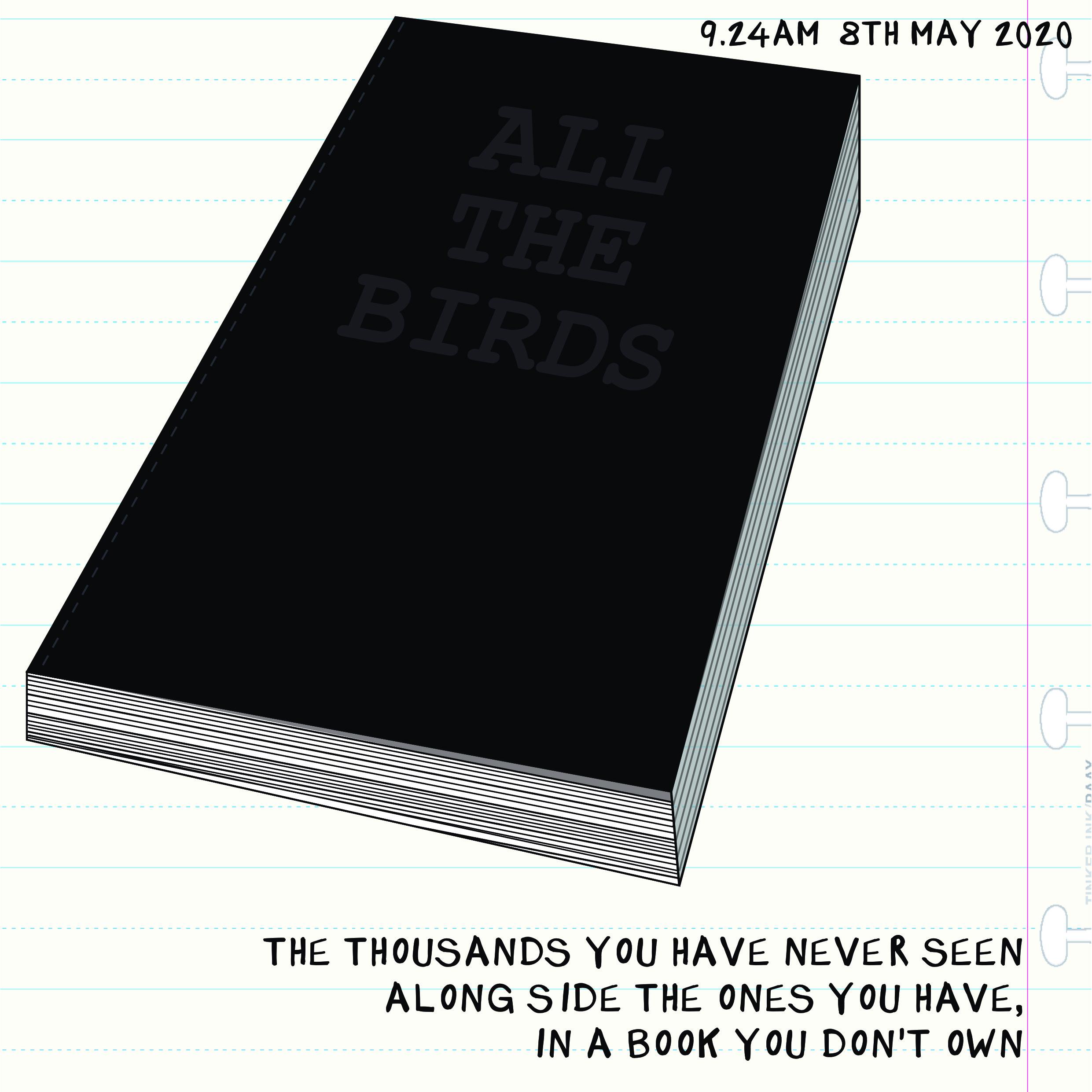 Bird Insta 0805