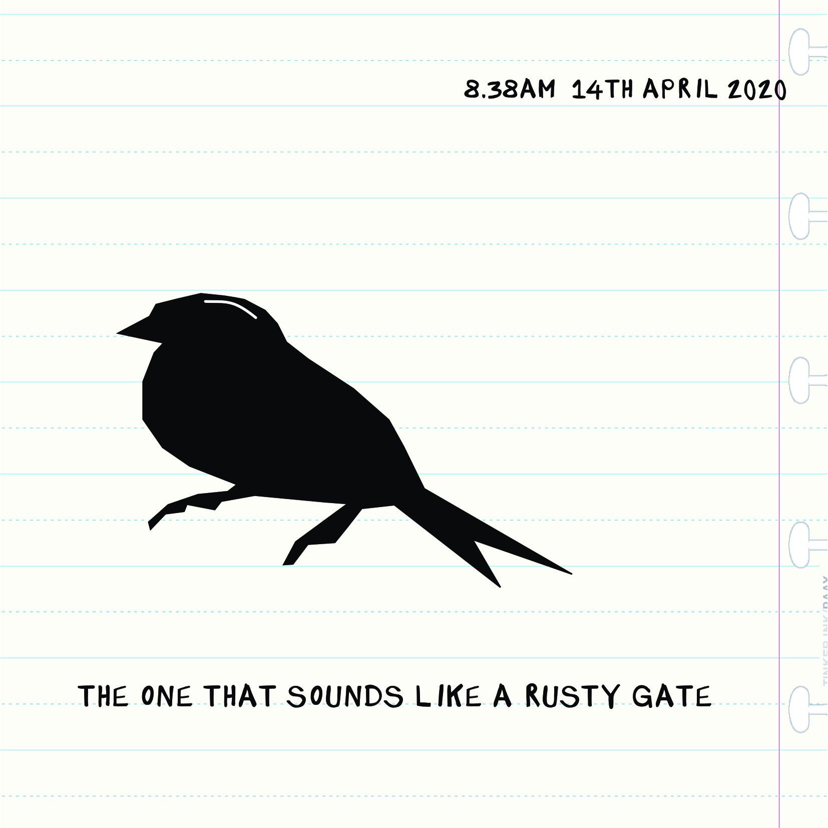 Bird Insta 1404