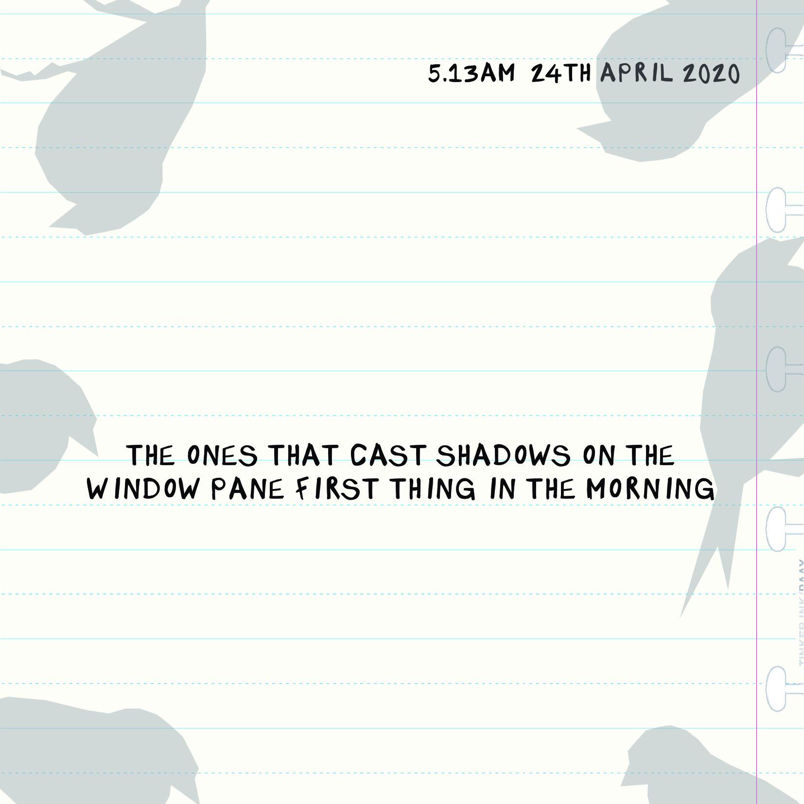 Bird Insta 2404