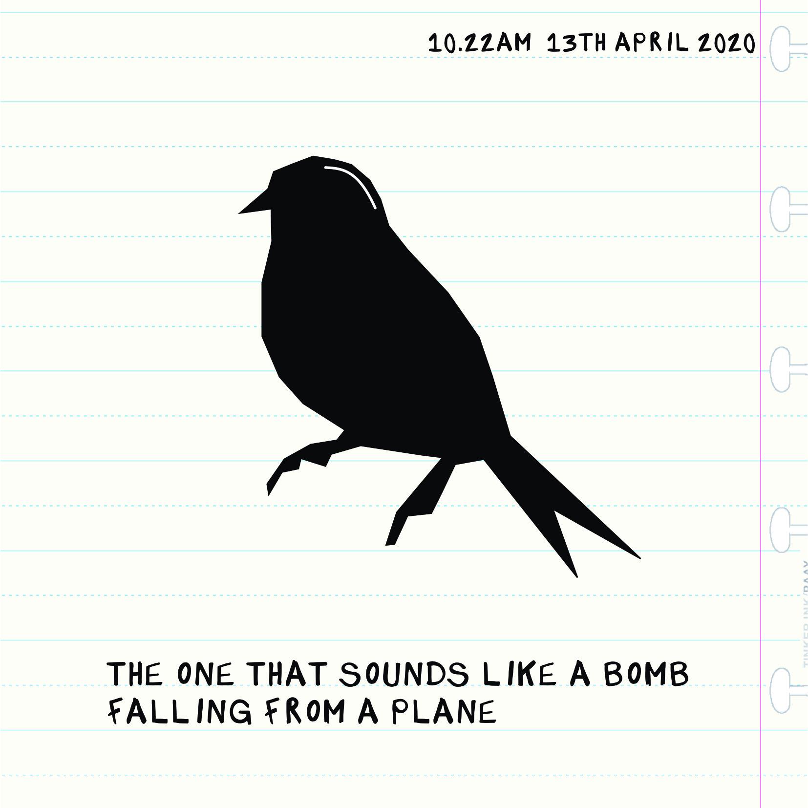 Bird Insta one 13:04
