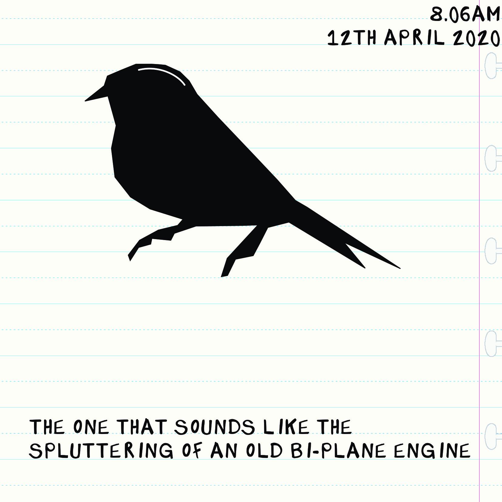 Bird Insta three DATED