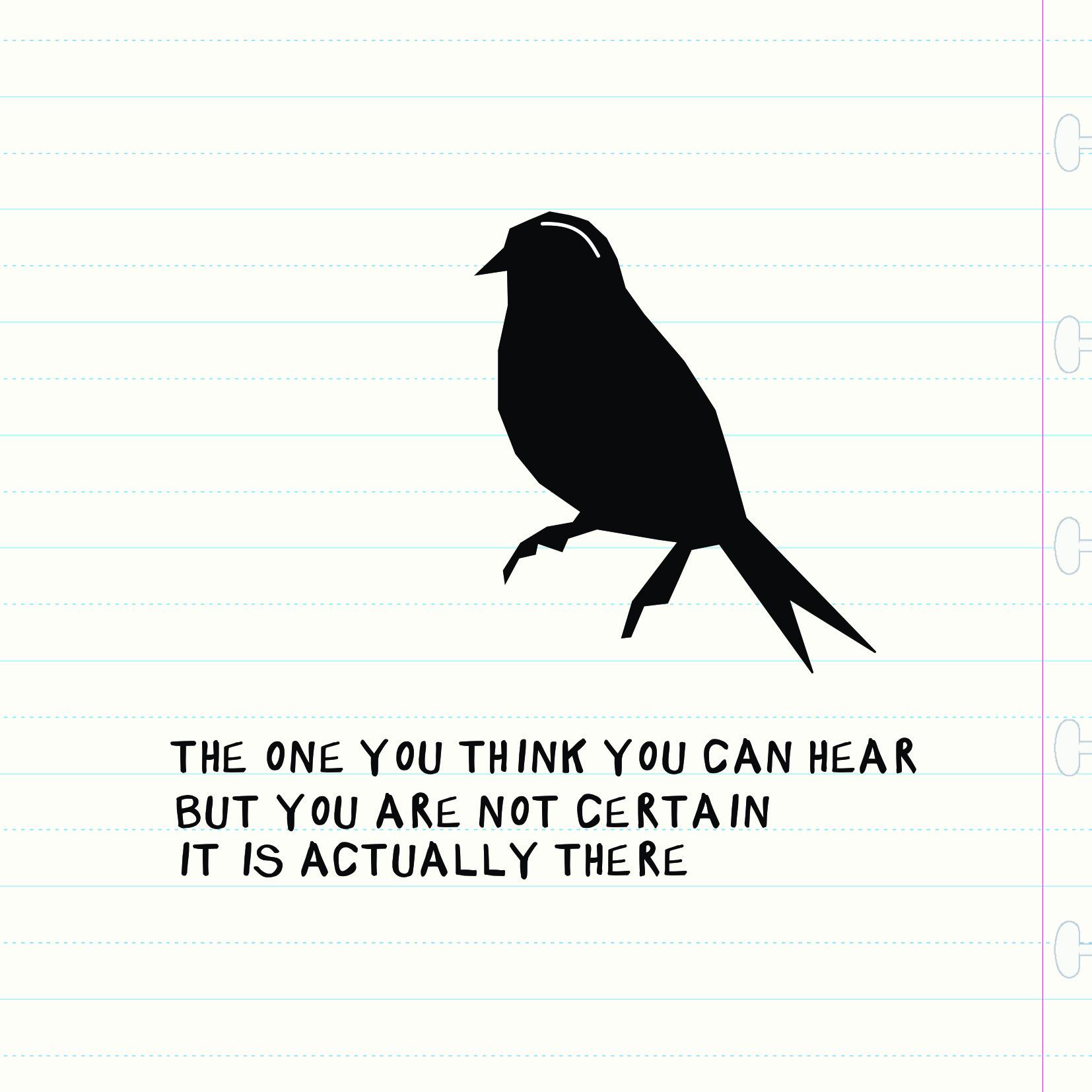 Bird Insta TWo